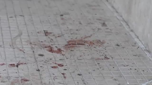 Catania, omicidio a Librino: ucciso pregiudicato$