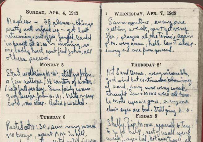 Il diario di Robert Toner