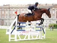 """Reggia di Caserta « a cavallo»: c'è il concorso ippico """"Coppa d'oro"""""""