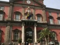 Napoli, cade frammento dallo stemma del Museo Archeologico
