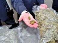 Traffico di droga, 19 arresti Sgominato clan italo-albanese