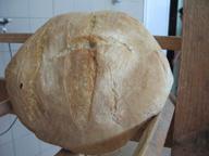Camorra, i commercianti obbligati a comprare il pane del clan