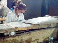 Egittomania, l'Archeologico di Napoli inaugura la collezione ritrovata