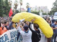 Bari, la protesta tra scimmie e banane
