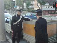 Fallisce furto olive, sette arresti Proprietaria ringrazia per raccolta gratis