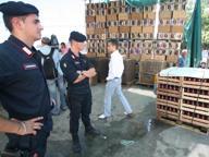Sequestrate 9 tonnellate di ortofrutta e conserve di pomodoro non tracciate
