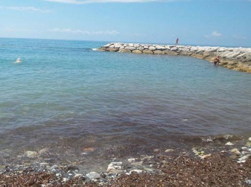 Pisciotta mare sporco e puzzolente nella localit bandiera blu del cilento - Mare in tavola foggia ...